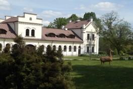 Botanikos sodas Vilniuje