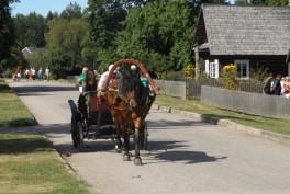 Arklio muziejus Anykščiuose