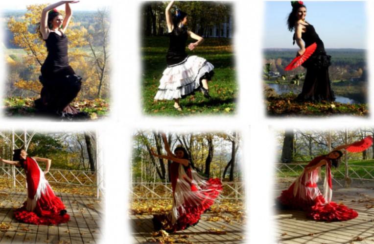 "Flamenko šokių studija ""FLAMENKO.LT"""