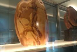 Gintaro muziejus Palangoje